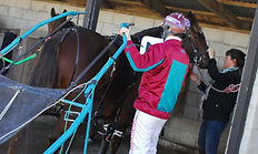 Gavin Smith Racing Stables - Driver