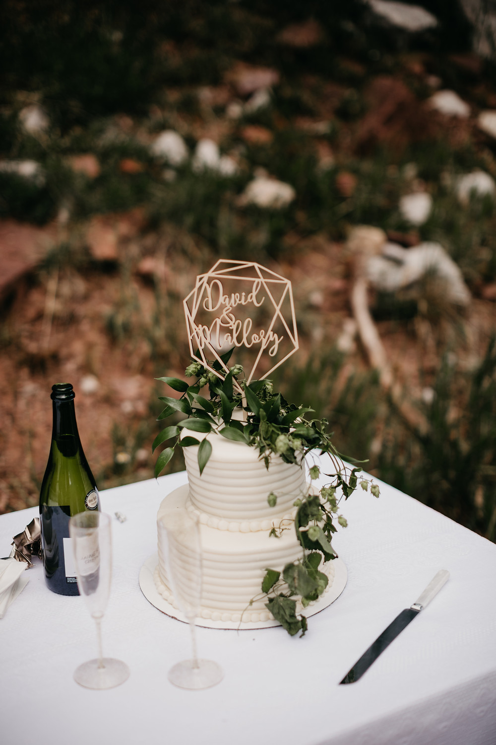 Mallory & David Aspen Elopement - Emma Lea Floral- Our Two Hearts Photography - Maroon Bells - Aspen Wedding - Denver Colorado Fine Art Floral Design - Luxury Wedding and Event Florist - Anemone | Rose  | Astrantia | Hops | Jasmine | White, Ivory, Navy | Mountain Wedding | Organic | Cake |