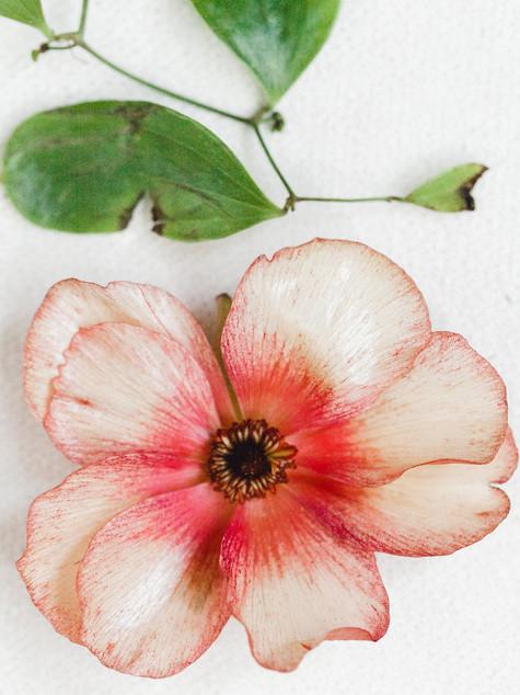 Emma Lea Floral- Sara Brown Weddings- Sara Lynn Photography- Stefanie Hofmeister Lettering & Design- Wildflower Cakes - Hotel Teatro | Denver Colorado Fine Art Floral Design - Wedding and Event Florist | Modern Minimal | Modern Florals | Butterfly Ranunculus | Couture Colorado |