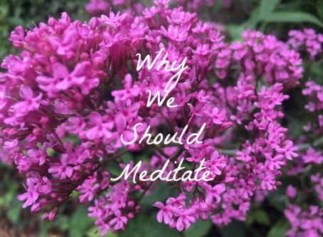 Why We Should Meditate