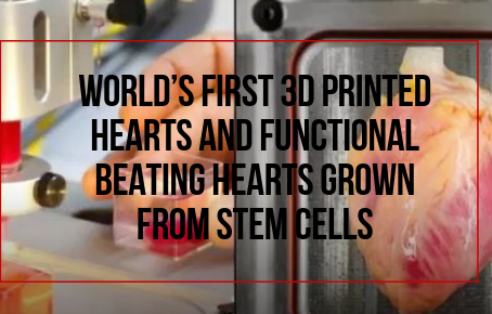 World's First 3D Printed Hearts And Functional Beating Hearts Grown From Stem Cells