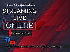 Live Streaming flyer for website.jpg