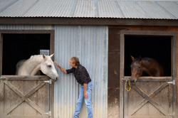 horses-in-barn-Maria-02