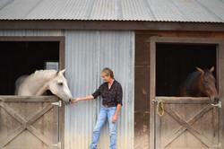 horses-in-barn-Maria-04