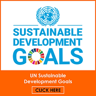 UN Sustainability Buttons.png