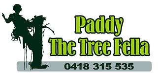 Paddy the tree fella logo.png