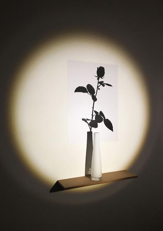 shadow of shadow