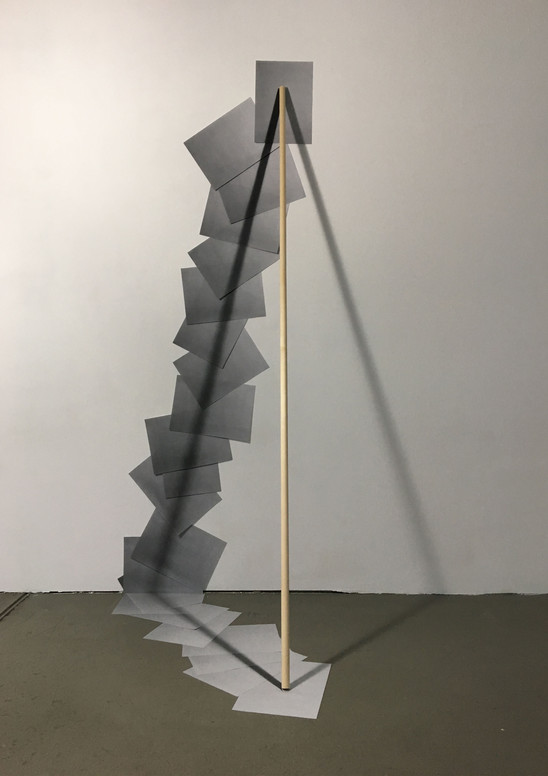 shadow of stick