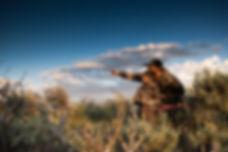 colorado-archery-hunt-2019-1023.jpg