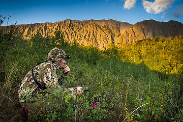 colorado-archery-hunt-2019-3561.jpg