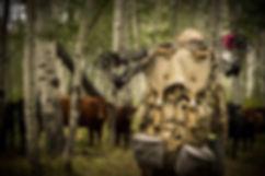 colorado-archery-hunt-2019-3758.jpg
