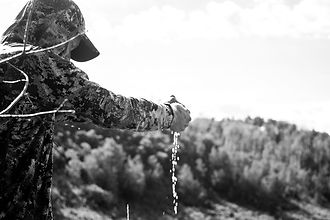 colorado-archery-hunt-2019-3349.jpg