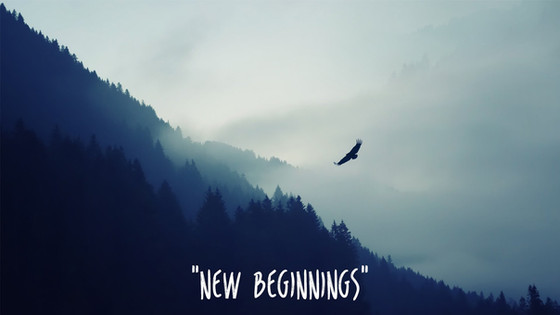 New Beginnings in 2016