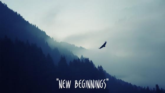 New Beginnings in 2016