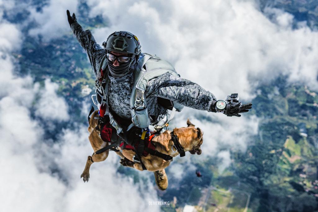 photoshoot salto