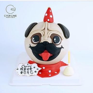 生日小八哥狗  狗狗扑爆蛋糕
