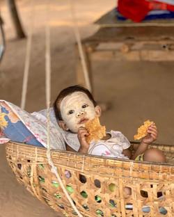 Burmesse baby