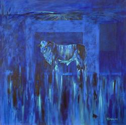 Contracampo azul