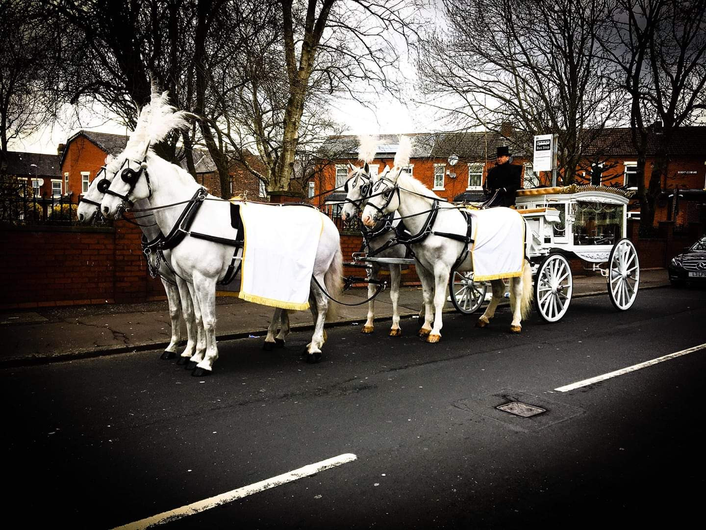 Only Fools & Hearses