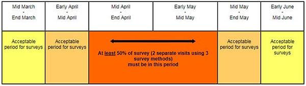 newt-survey.jpg