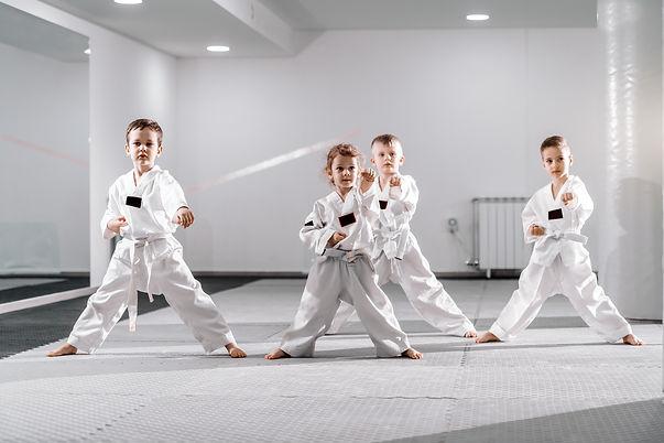 small-group-caucasian-kids-doboks-practi