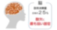 brain01.png