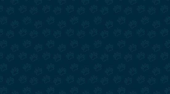 Pattern_Adopta2.png
