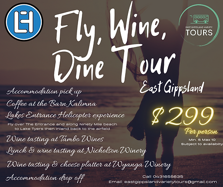Fly Wine Dine (2).png