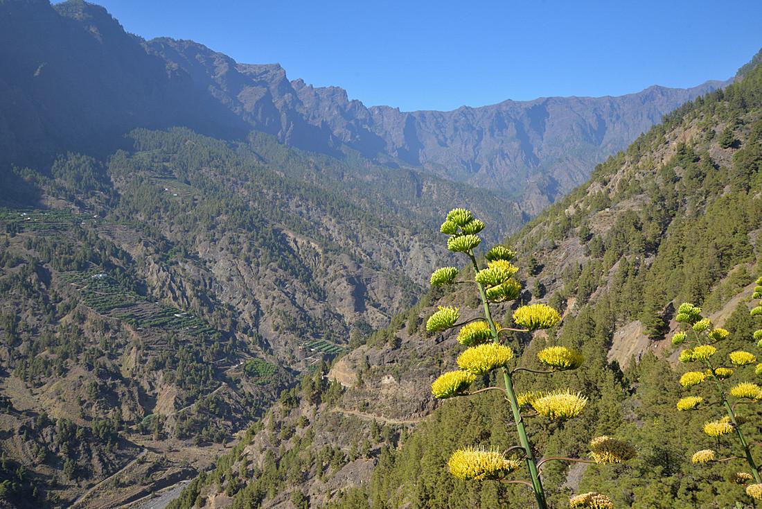 La Palma, Schlucht der Todesängste