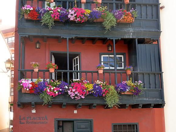 La Palma, Blumen Balkone, Santa Cruz
