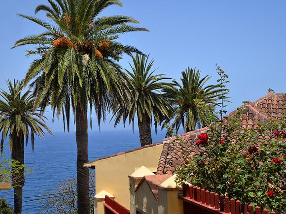 La Palma, San Andres