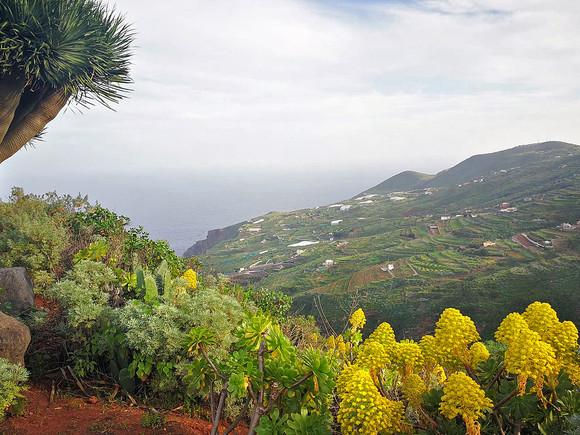 La Palma, Mirador San Bartolo