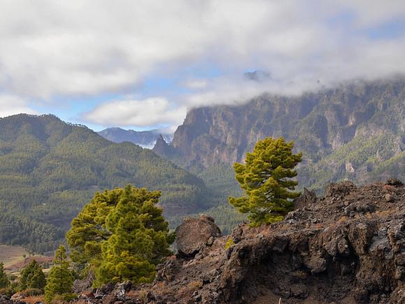 La Palma, Blick zur Caldera