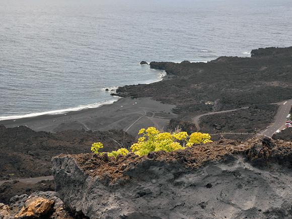 La Palma, der vulkanische Süden, Strand