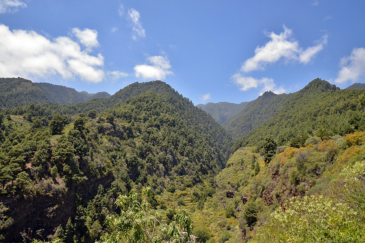 La Palma, grüner Osten, Berge