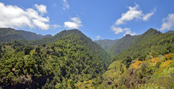 La Palma, der grüne Osten