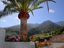 La Palma, rund um die Virgen de las Nieves