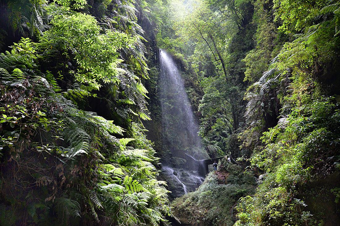 La Palma, Wasserfall Los Tilos