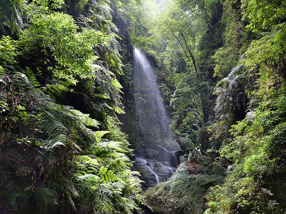 La Palma, Wasserfall, Los Tilos