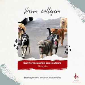Día internacional del perro callejero - 27 de julio