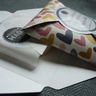 Cardboard envelope Travel_Trial_Guest ba