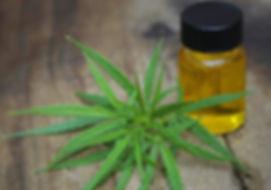 cannabis-oil-sales.jpg