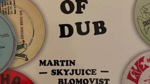 "100 Days Of Dub - Martin ""Skyjuice"" Blomq"