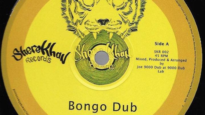 Joe 9000 Dub–Bongo Dub