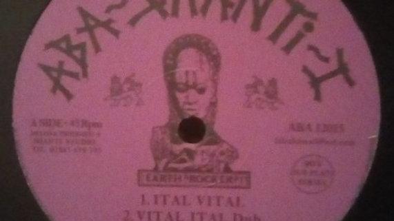 Ital Vital / Concrete Stepper - The Shanti-Ites