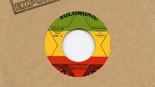 Bunny Wailer–Rule Dancehall