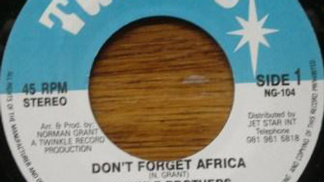 Twinkle Brothers ‎– Don't Forget Africa