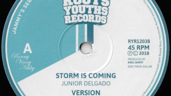 Storm Is Coming / Righteous One- Junior Delgado /Michael Buckley