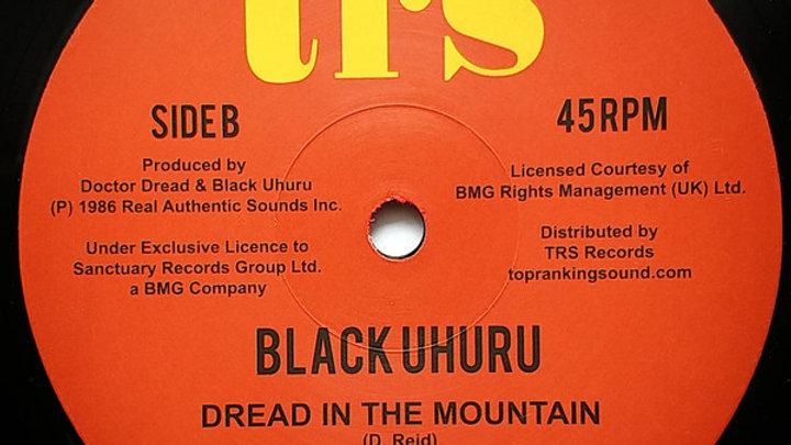 Let Us Pray / Dread In The Mountain – Black Uhuru