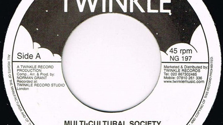 Twinkle Brothers ‎– Multi-Cultural Society
